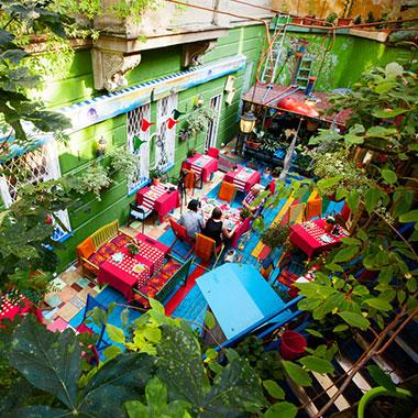 summer garden Aleksa